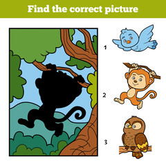 Find the correct picture. Little monkey and background