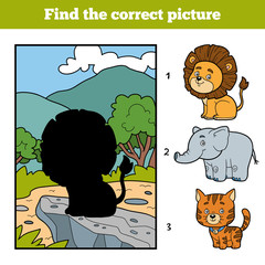 Find the correct picture. Little lion and background