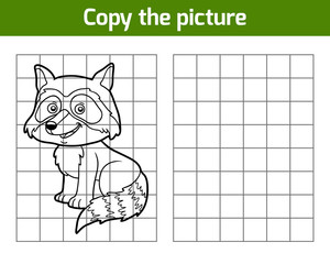 Copy the picture, Raccoon