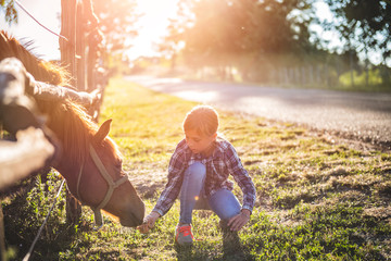 Girl feeding Brown Horse