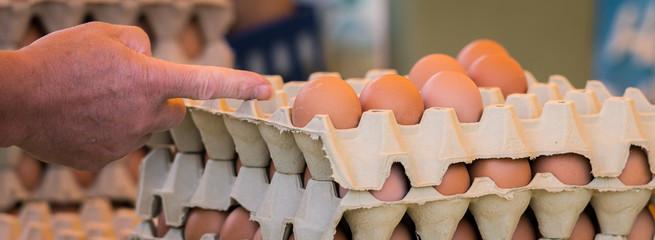 Frische Hühnereier Bio Eier vom Bauern auf einem Regionalmarkt