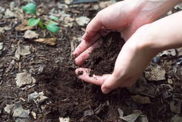 土を持つ女性の手 Fototapete