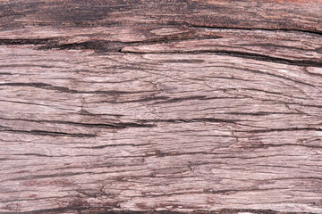 wood plate texture backgrounds closeup