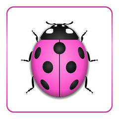 Ladybug small icon. Pink lady bug sign, isolated on white background. 3d volume design. Cute colorful ladybird. Insect cartoon beetle. Symbol of nature, spring or summer. Vector illustration