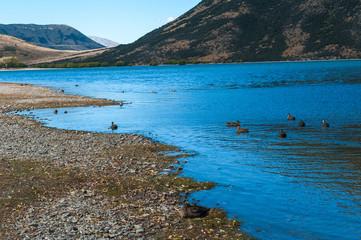 Lake Pearson / Moana Rua Wildlife Refuge located in Craigieburn Forest Park in Canterbury region, South Island of New Zealand