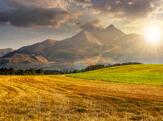 rural field in Tatra mountains  at sunset