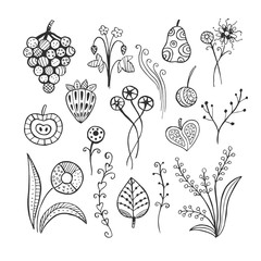 Hand drawn vector line floral  set. Doodle line illustration