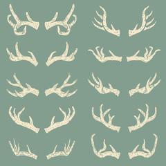 Set of hand drawn deer horns. Design elements for logo, label, e