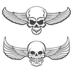 skulls with wings. Design element for poster, t-shirt print.