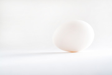one white egg isolated white background