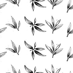 seamless vector pattern with olive branch