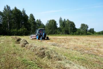 Трактор ворошит сено