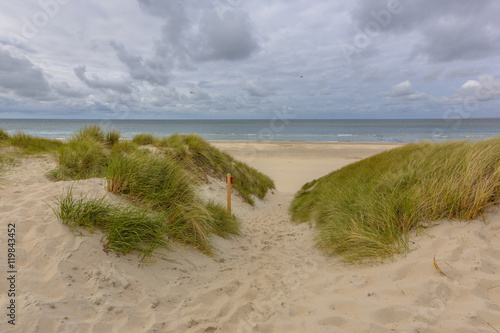 Wall mural Beach dune sea vista