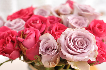A bouquet of pink and purple roses