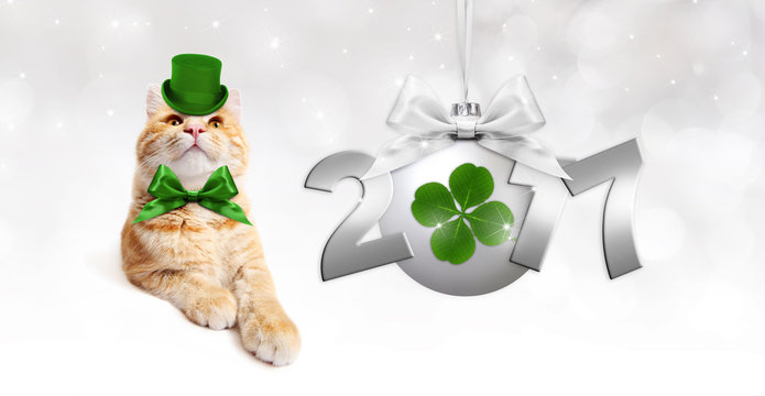 ginger cat with silver christmas ball with green clover, ribbon