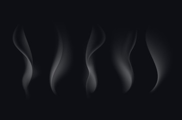 Vector Set of Realistic White Transparent Cigarette Smoke Waves Isolated