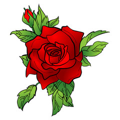 Vector illustration of a red rose.