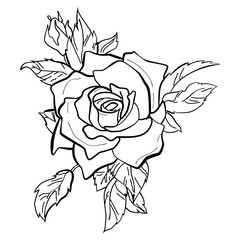 Vector illustration of a red rose