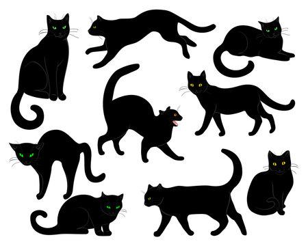black cats set