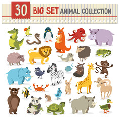 Big  collection of cute wild animal. vector illustration on whit