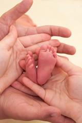 Infant heels in  mother's hand