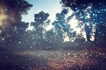 Abstract blurred dreamy woods and glitter bokeh lights