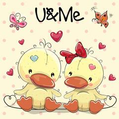 Two Cute Ducks