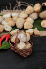 Fresh mushrooms for cooking on wood background.