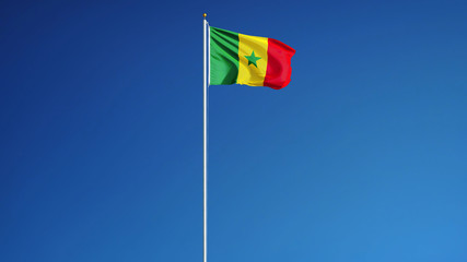 Senegal flag waving against clean blue sky, long shot, isolated with clipping path mask alpha channel transparency