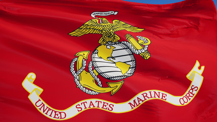 United States Marine Corps flag waving against clean blue sky, close up, isolated with clipping path mask alpha channel transparency Wall mural