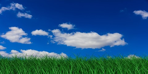 Grass and blue sky. 3d illustration