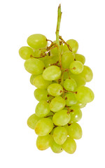 Juicy Ripe Grapes Isolated on White Background