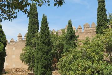 Espagne - Andalousie - Malaga - Remparts du Chateau de Gilbralfaro