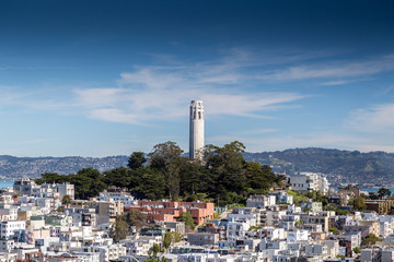 A view of Coit Tower in San Francisco Wall mural