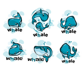 Whale fun cartoon illustration.