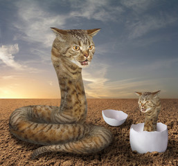 A cat looks like a big hairy snake. There is its cub in a egg near it.
