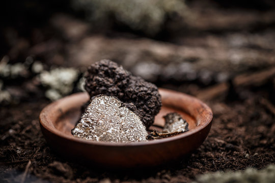 Black truffles slices