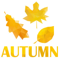 set of low poly autumn yellow leaves,