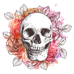 Skull And Flowers. Sketch With Watercolor Effect