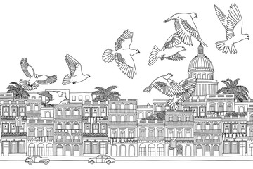 Havana, Cuba - hand drawn black and white cityscape with birds