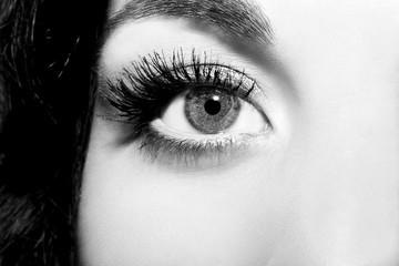 Beautiful insightful look monochrome woman's eyes