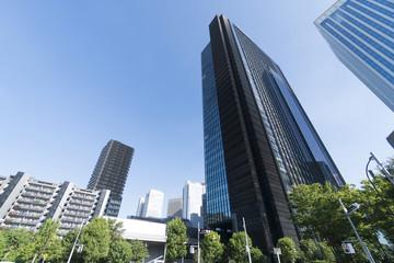 新宿高層ビル街 開発が新しい 西新宿8丁目 淀橋エリア 快晴 青空 新緑 超広角で見上げる
