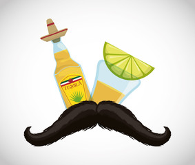 Tequila hat and mustache . Mexico landmark and mexican culture theme. Colorful design. Vector illustration