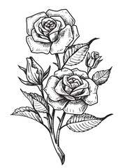 vector tattoo roses with leaves