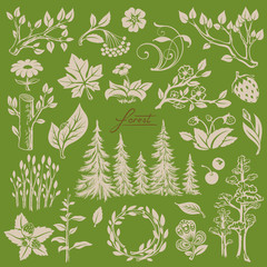Set of Hand-drawn Silhouettes of Trees, Branches, Leaves, Berries and Flowers