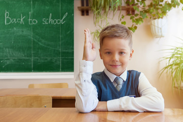 Happy schoolboy sitting at desk