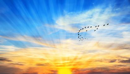cielo azul al atardecer