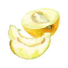 cut half melon and slice melon watercolor on the white bachground
