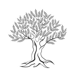 Olive tree outline silhouette icon isolated on white background.