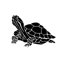 Vector hand drawn illustration of turtle. Black silhouette of tortoise.